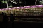 Meiji-jingū (明治神宮) - Sake donations