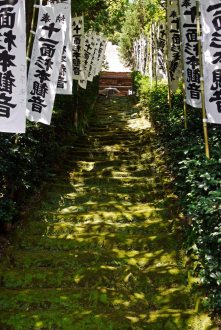 Sugimoto Dera (杉本寺)