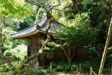 Zuisen-ji (瑞泉寺)