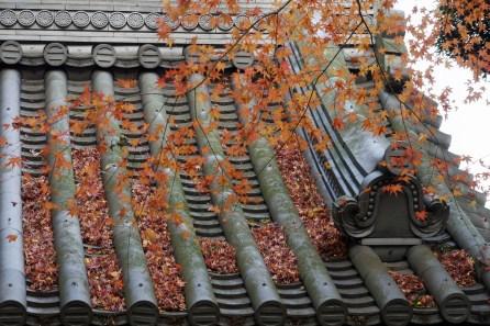 Hōkoku-ji (報國寺)