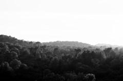 Massif de l'Esterel (Agay - Var)