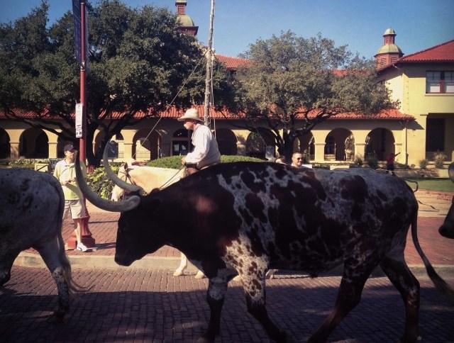 #RunningTo: Fort Worth, TX