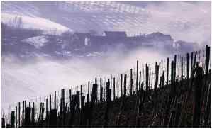 site_piemont_brouillard