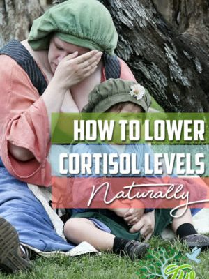 How To Lower Stress (Cortisol) Levels Naturally