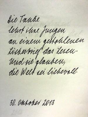 Die Taube (Ute Schlerath)