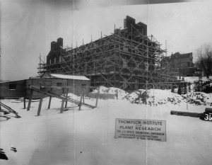 Boyce Thompson Institute construction - 1923.