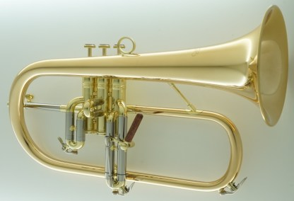 Carol Brass CFL-6200-GSS-Bb-L Flugelhorn