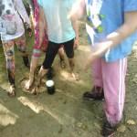 Bellevue Pond Mud 2017 10
