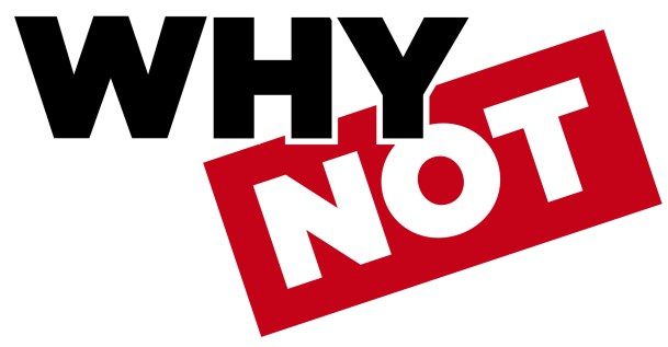 WhyNot Logo Color 002 300x156 - Bán dữ liệu data thống kê dự báo kiểm định luận văn