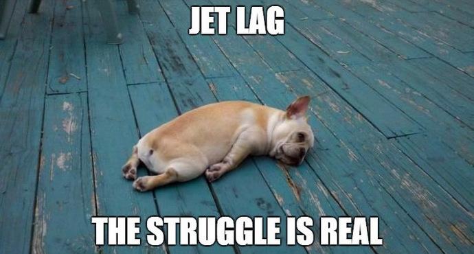 Image result for jet lag meme