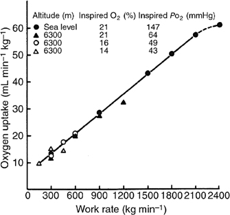 Figure 18.2
