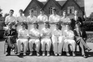 Cricket undated 2
