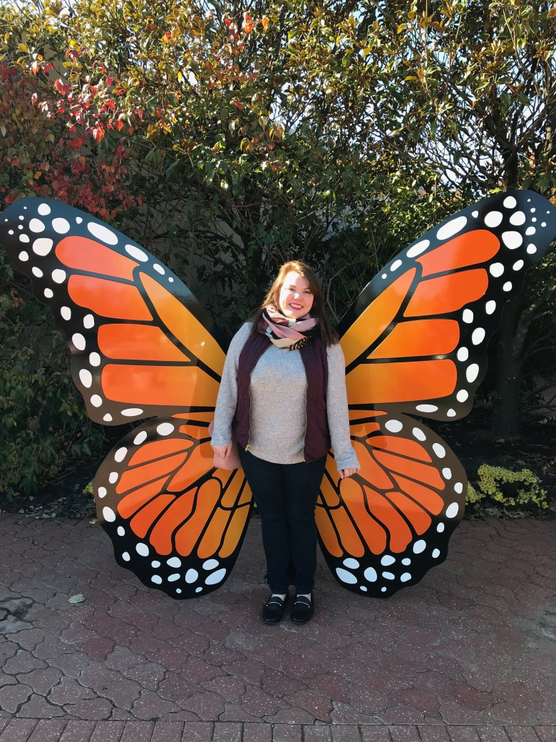 In this first installment of my Guide to St. Louis I'm sharing about my trip to the Sophia M. Sachs Butterfly House followed by lunch at Sugarfire Smokehouse. #stlouis #travel