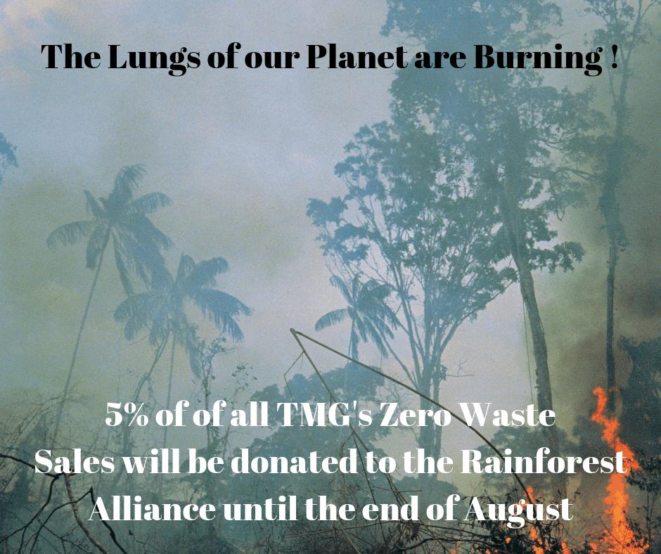 Amazon Rainforest Fires