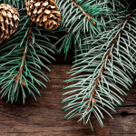 How to reduce waste this Christmas and make it a little Greener