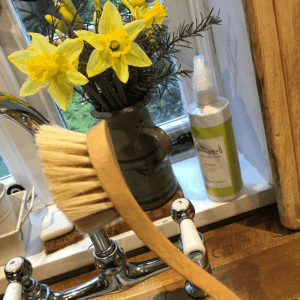 Wooden Dish Brush with Plant Bristles