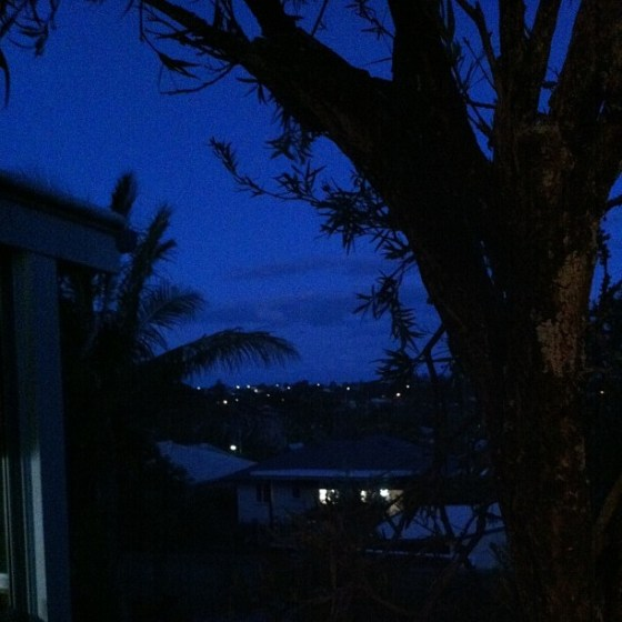 Spring nights in Manly, or a view from my window