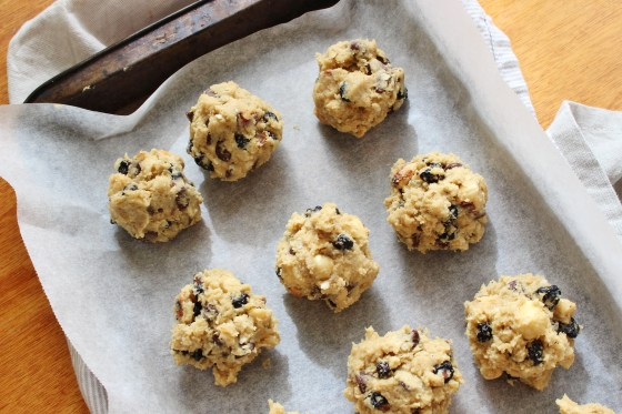 Hazelnut, Dried Blueberry, and Chocolate Chip Quinoa Cookies   Gluten Free   Thoroughly Nourished Life