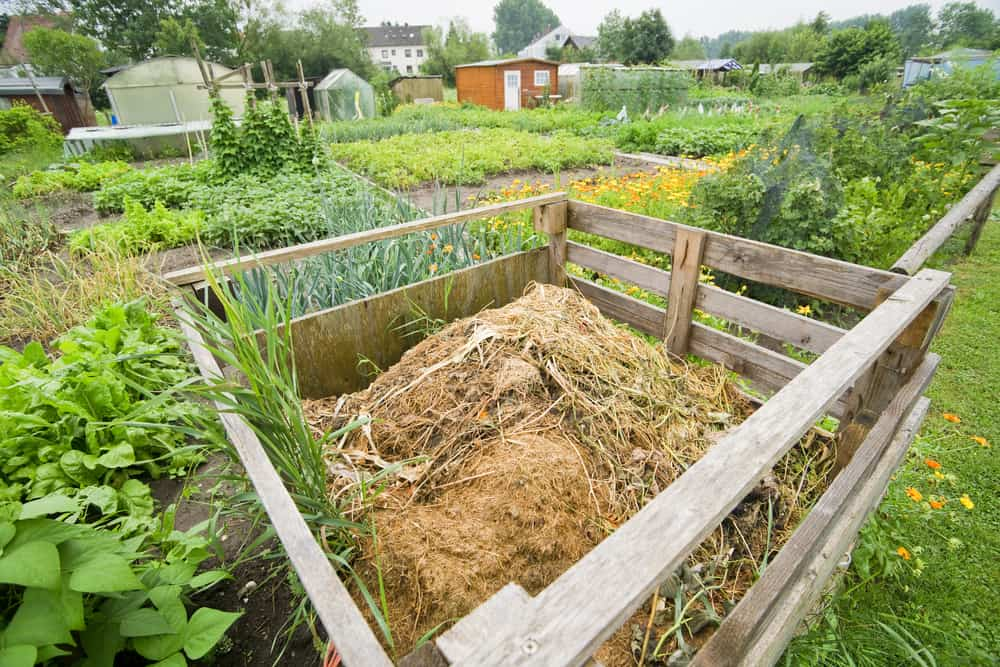 Build-a-compost-pile-where-you-plan-to-plant-thoselondonchicks