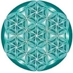 flordavida1 Geometria Sagrada, a Flor da Vida e a Linguagem da Luz.