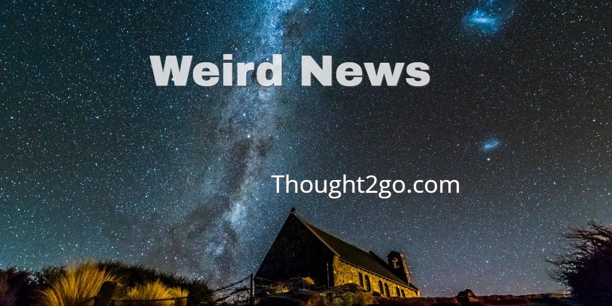WeirdNews