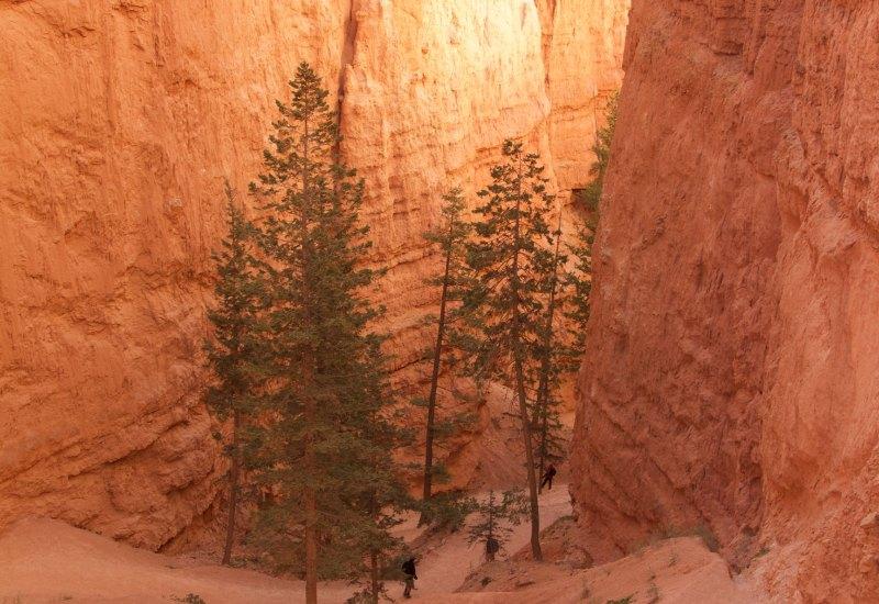 Bryce Canyon – Wall Street
