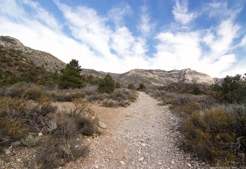 La Madre Springs Trail