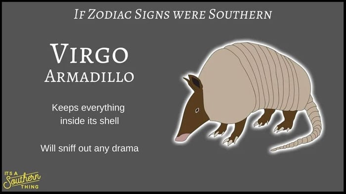 Have You Seen The Southern Version Of The Zodiac? It's Hilarious, But Also Astonishingly Accurate