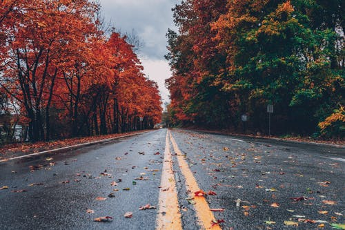 fall in love with fall! 7 reasons to be excited about the fall season