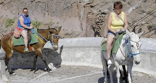 overweight tourists are crippling the donkeys on santorini