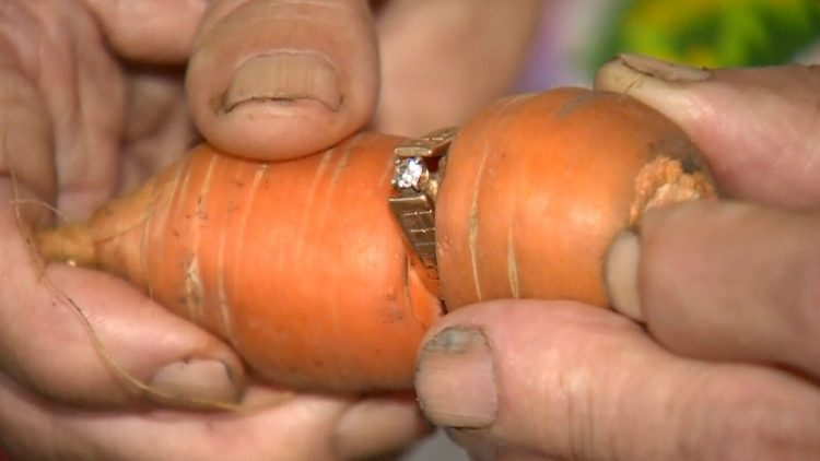 this woman lost her engagement ring in the garden, finds it 13 years later wrapped on a carrot