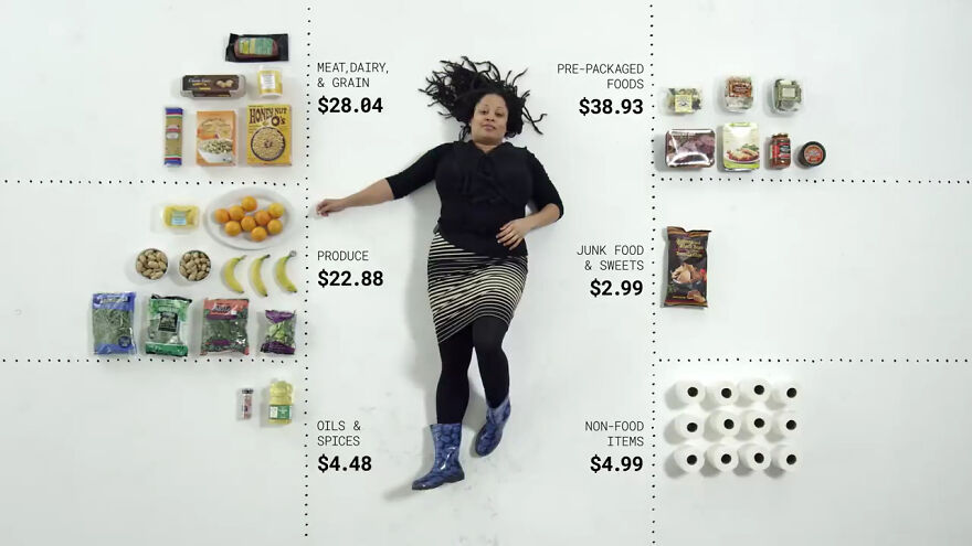 people from 24 different households were given $100 to spend on groceries, here's what they bought