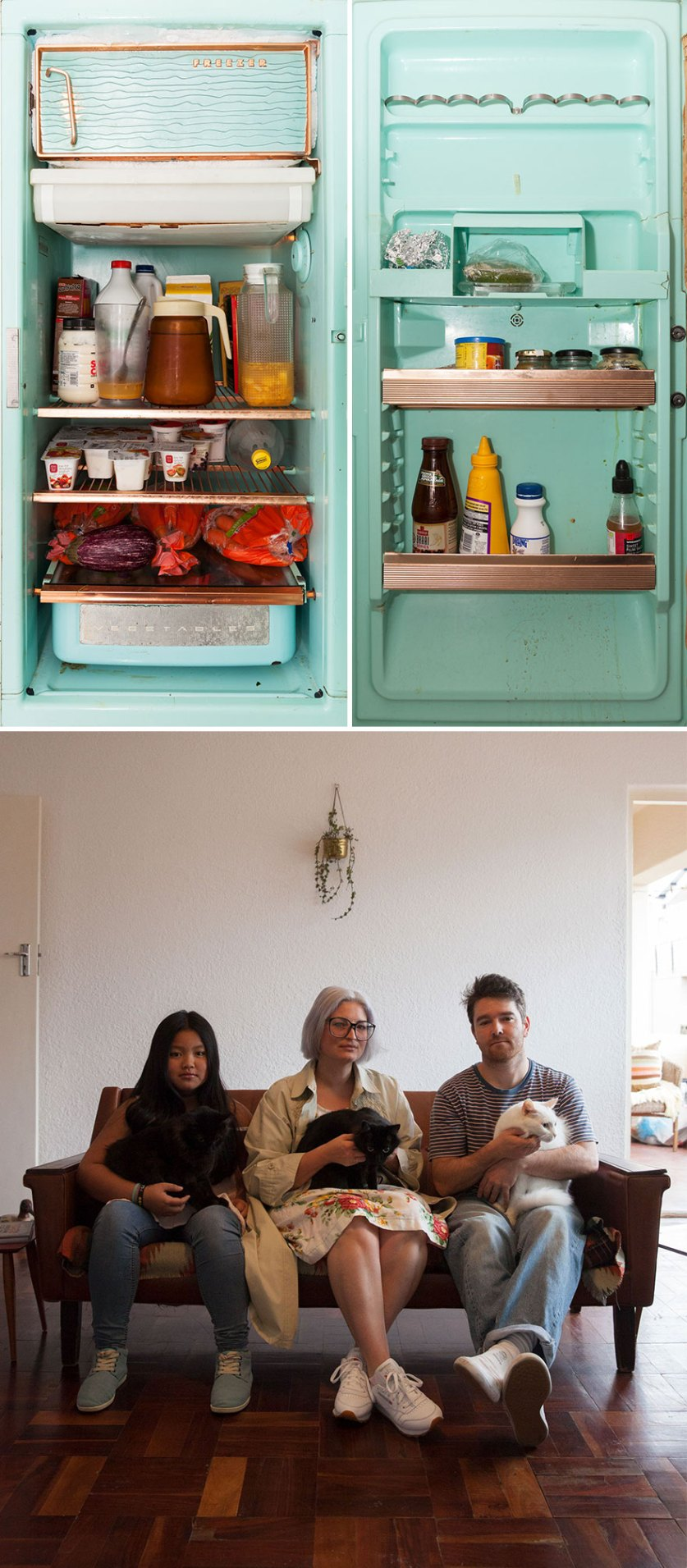 photographer compares 14 fridges and their owners around the world