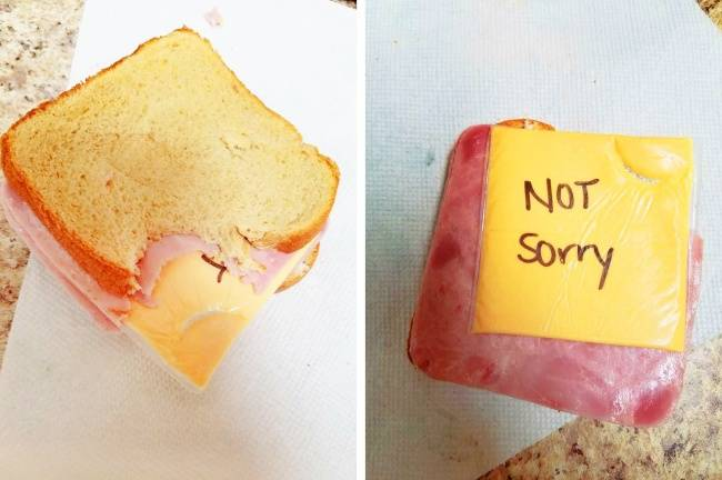23 examples where both partners in a couple are masters of pranking