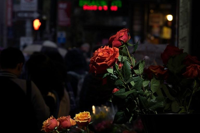 roses_DSCF1589