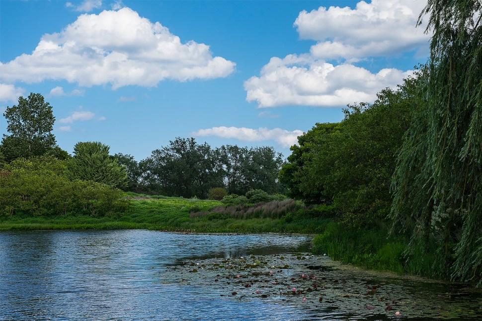 landscape_DSCF3628