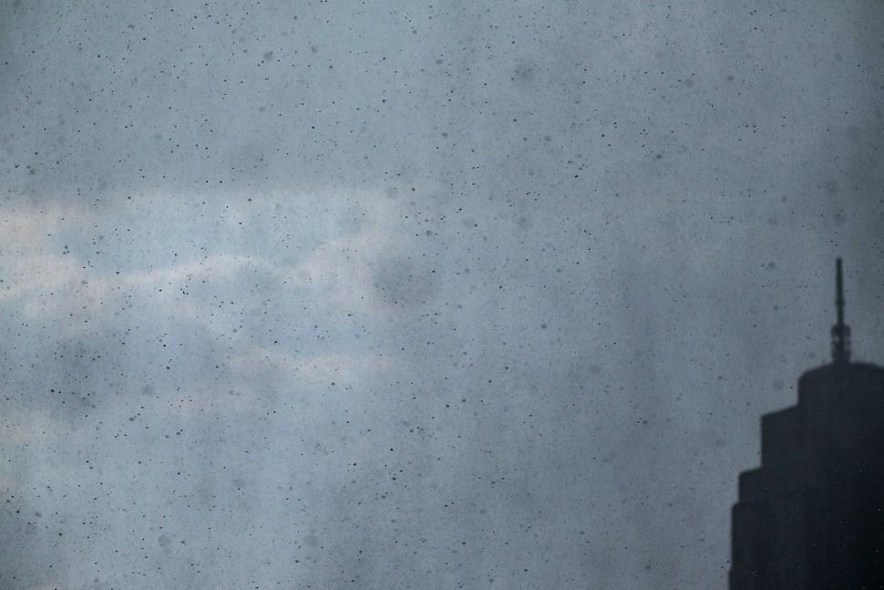 rain_DSF3189