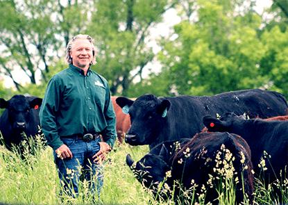 Matt M in Minnesota pastures