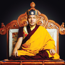 His Holiness the 17th Gyalwang Karmapa