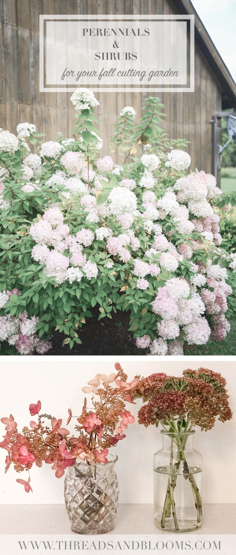 Perennial Cutting Garden