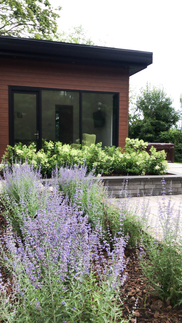Annual vs perennial plants - 7 differences