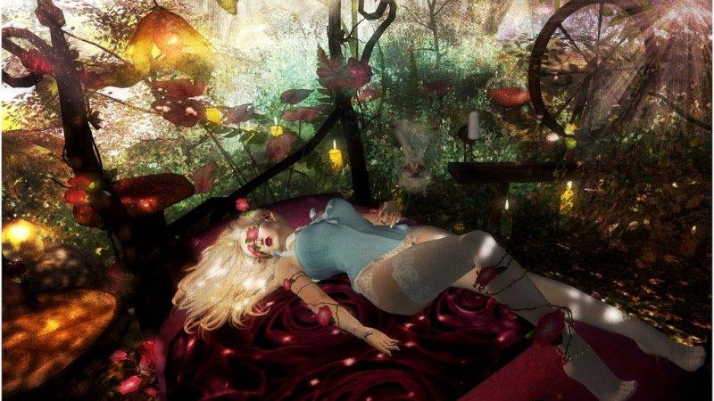 Aurora Dreams
