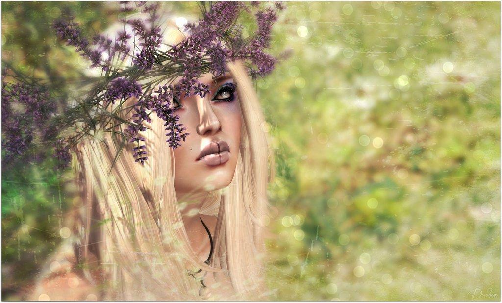 Silent Lavender