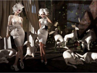 Milk Cabaret