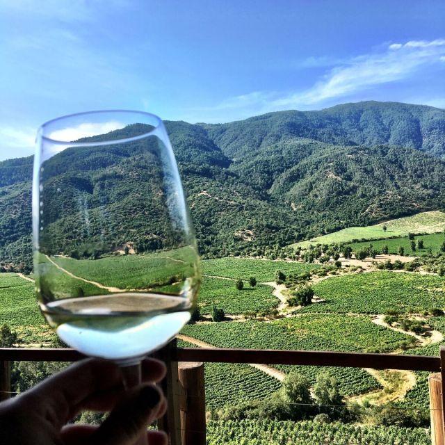Colchagua Chile_Chilean Wine Adventure_ThreadsandVino