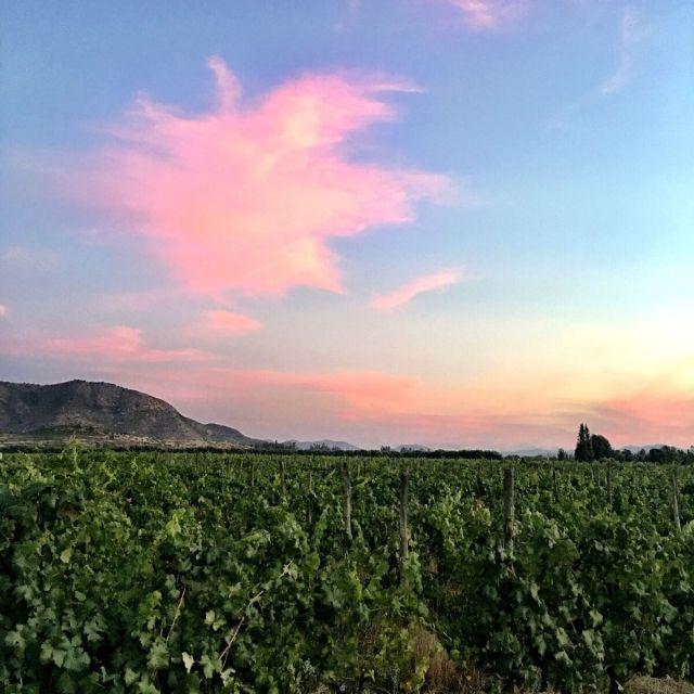 SunsetinColchagua_Colchagua Chile_Chilean Wine Adventure_ThreadsandVino