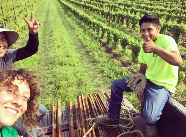 threadsandvino_winemaker interview_christiana mcdougal_black birch vineyards_winemaker_winemaking_women winemaker