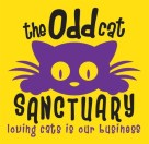 The Odd Cat Sanctuary
