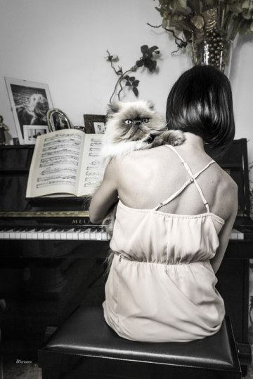 cat with woman playing piano