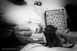 sabrina_boem_photography